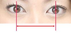 黒目 大き さ 平均